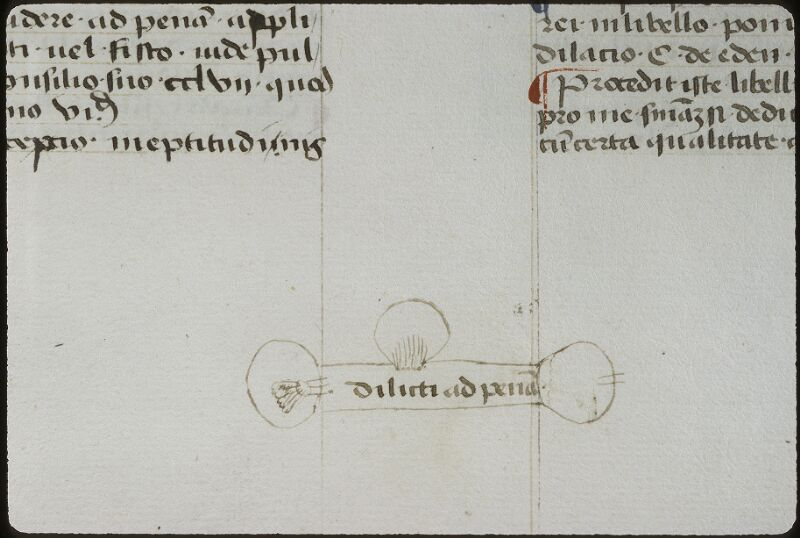 Lyon, Bibl. mun., ms. 0392, f. 166v