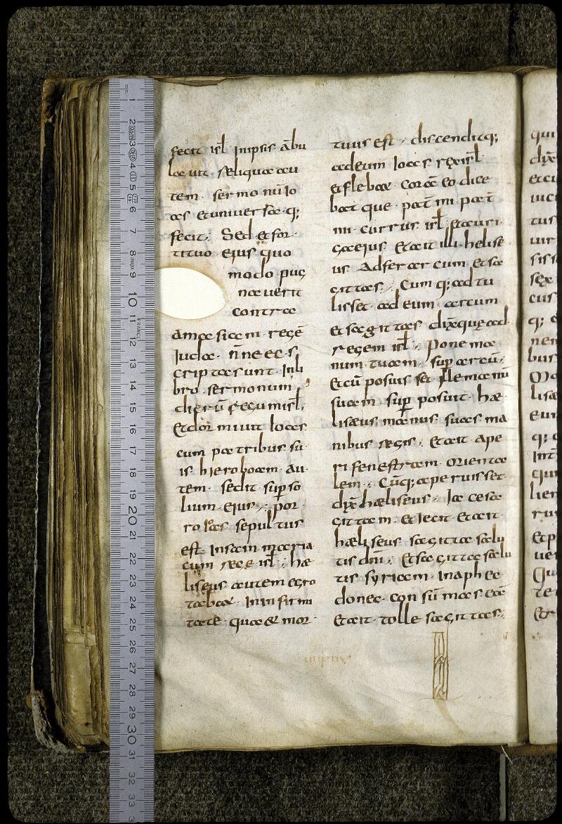 Lyon, Bibl. mun., ms. 0401, f. 165v - vue 1