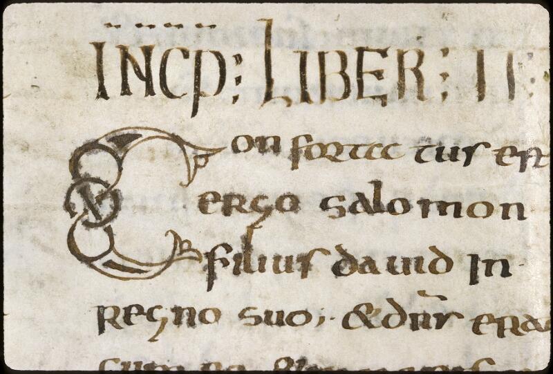 Lyon, Bibl. mun., ms. 0401, f. 234v - vue 2