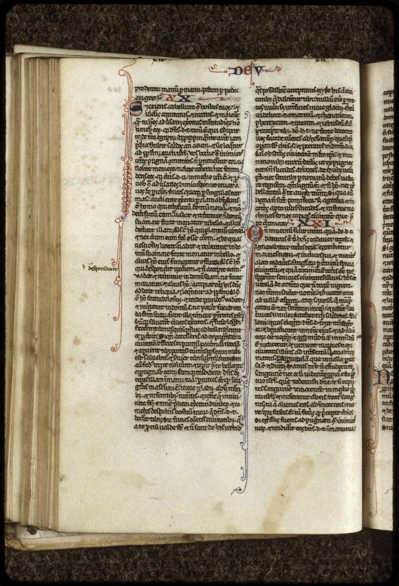 Lyon, Bibl. mun., ms. 0407, f. 100v