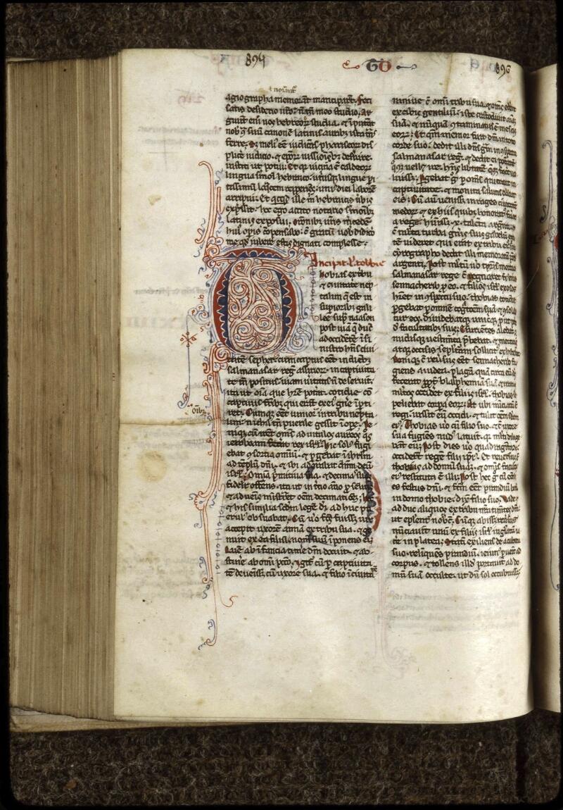 Lyon, Bibl. mun., ms. 0407, f. 219v