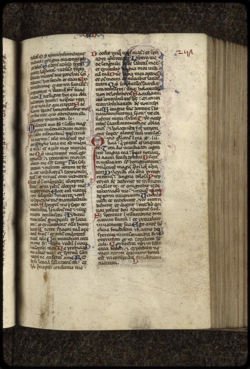 Lyon, Bibl. mun., ms. 0407, f. 257 - vue 1