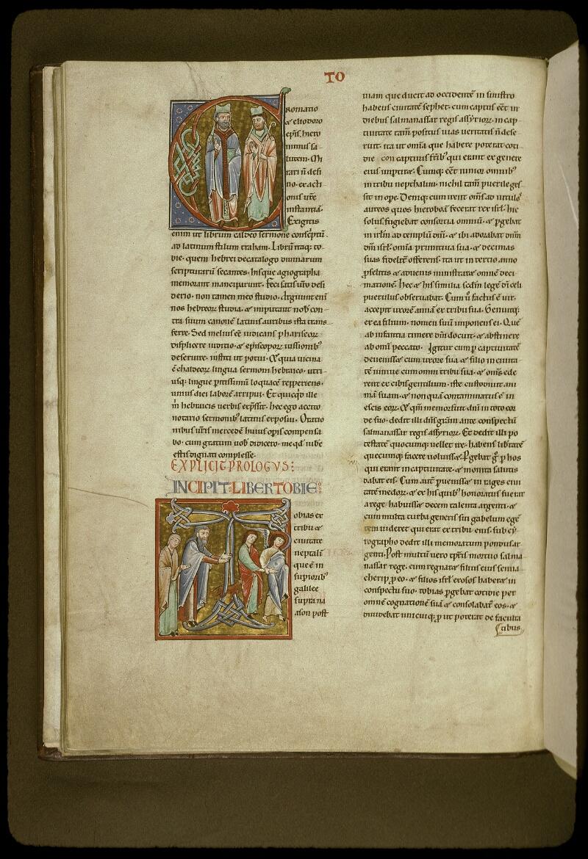 Lyon, Bibl. mun., ms. 0411, f. 012v - vue 1