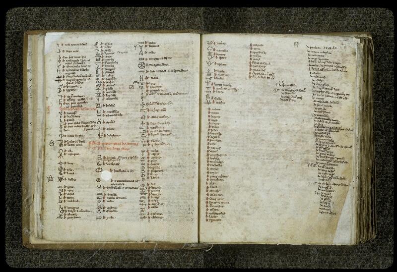 Lyon, Bibl. mun., ms. 0414, f. 018v-019