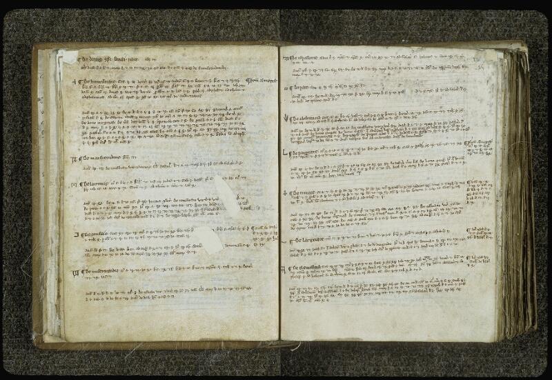 Lyon, Bibl. mun., ms. 0414, f. 024v-025