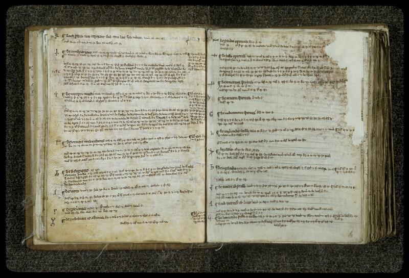 Lyon, Bibl. mun., ms. 0414, f. 026v-027