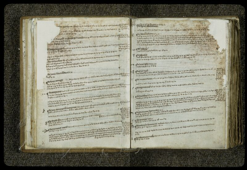 Lyon, Bibl. mun., ms. 0414, f. 027v-028