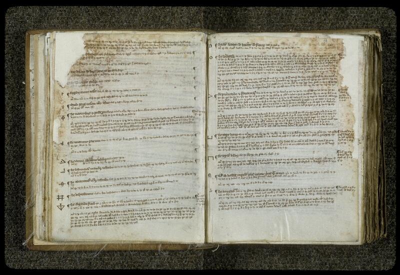 Lyon, Bibl. mun., ms. 0414, f. 028v-029