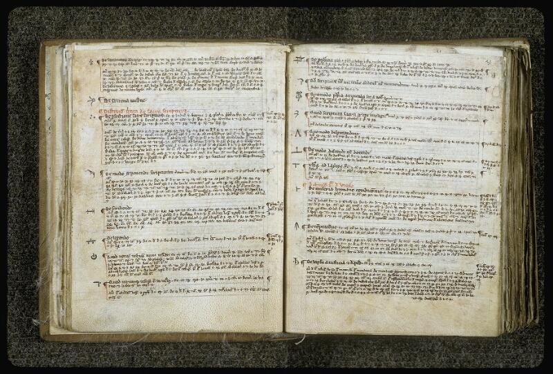 Lyon, Bibl. mun., ms. 0414, f. 030v-031