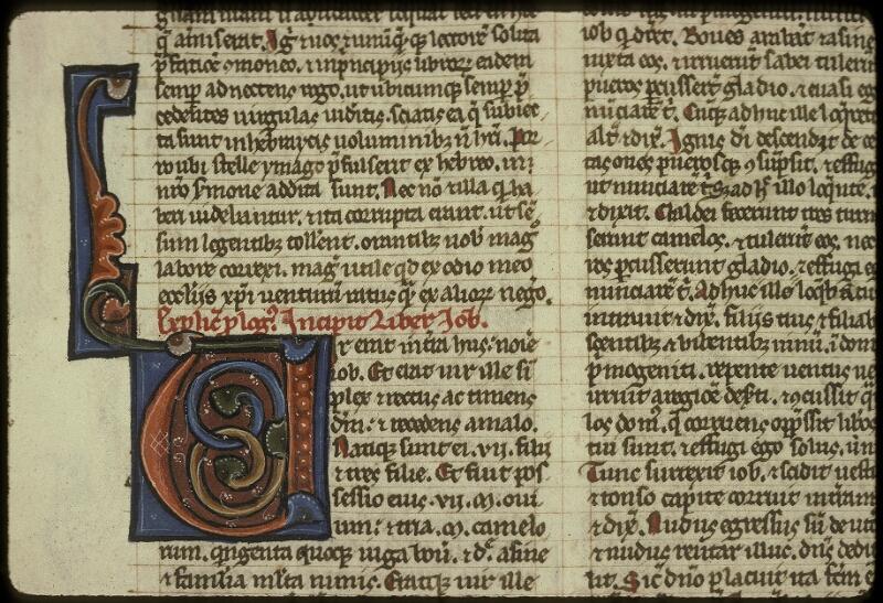 Lyon, Bibl. mun., ms. 0416, f. 175v - vue 2