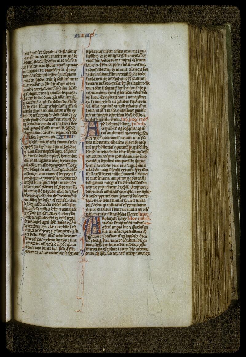 Lyon, Bibl. mun., ms. 0417, f. 223