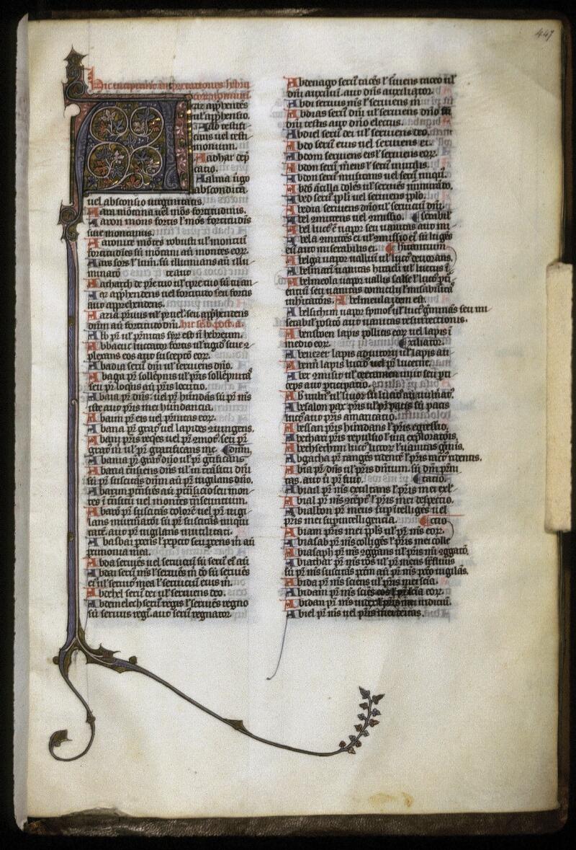 Lyon, Bibl. mun., ms. 0418, f. 447
