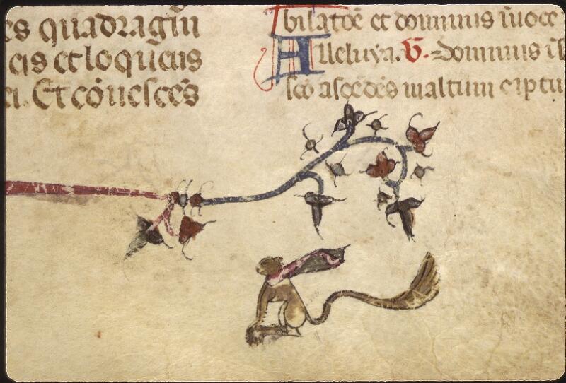 Lyon, Bibl. mun., ms. 0512, f. 123 - vue 3