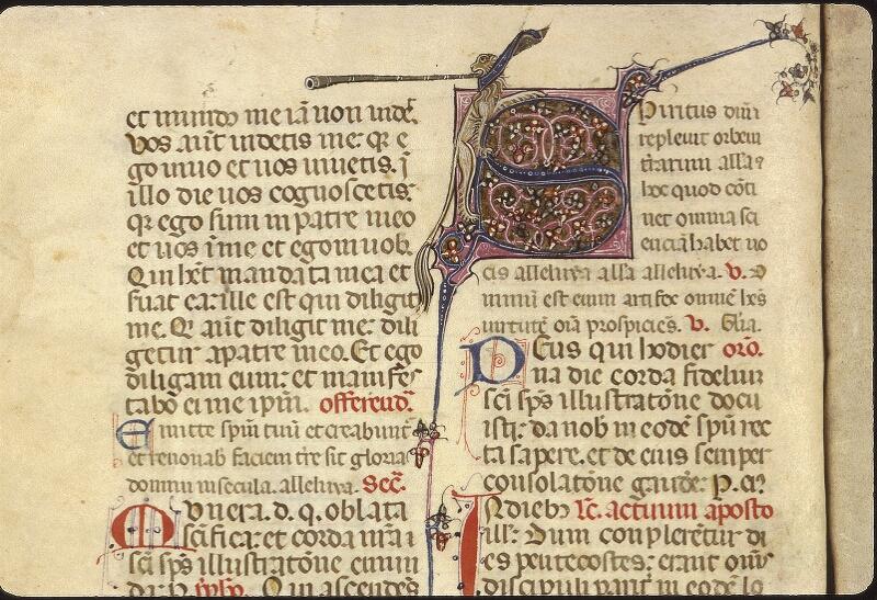 Lyon, Bibl. mun., ms. 0512, f. 125v - vue 2