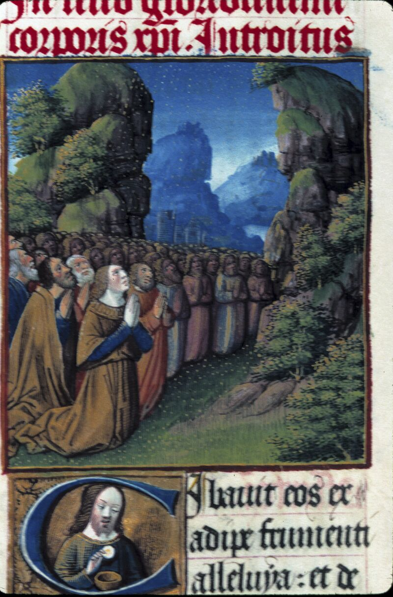 Lyon, Bibl. mun., ms. 0514, f. 219v