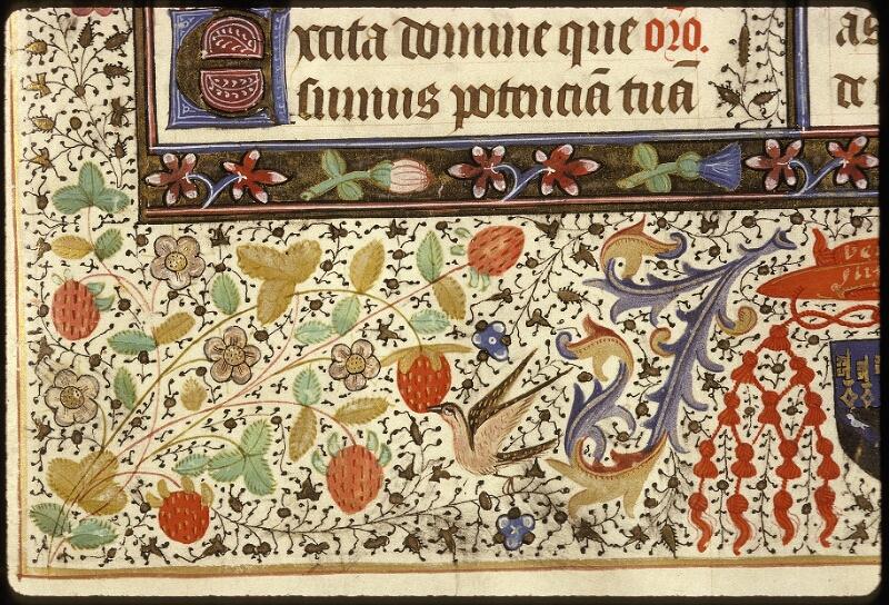Lyon, Bibl. mun., ms. 0517, f. 008 - vue 6