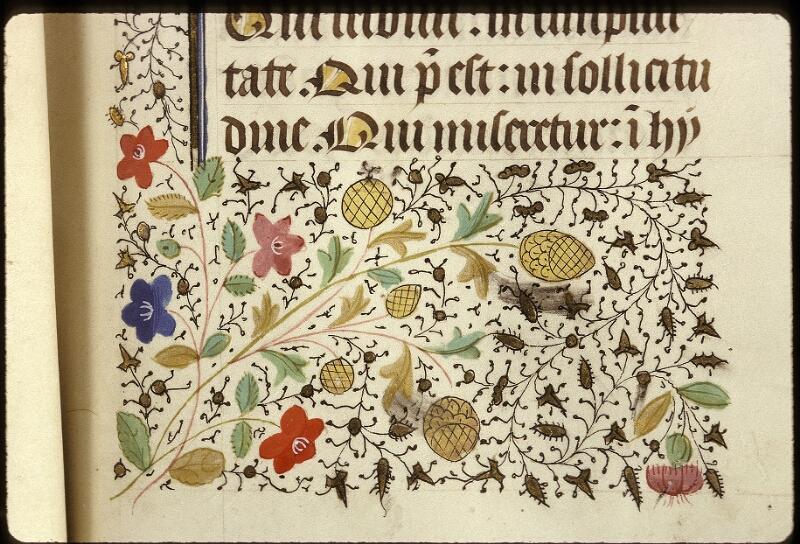 Lyon, Bibl. mun., ms. 0517, f. 031