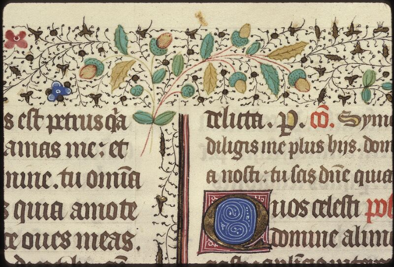 Lyon, Bibl. mun., ms. 0517, f. 350