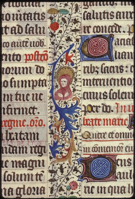 Lyon, Bibl. mun., ms. 0517, f. 369