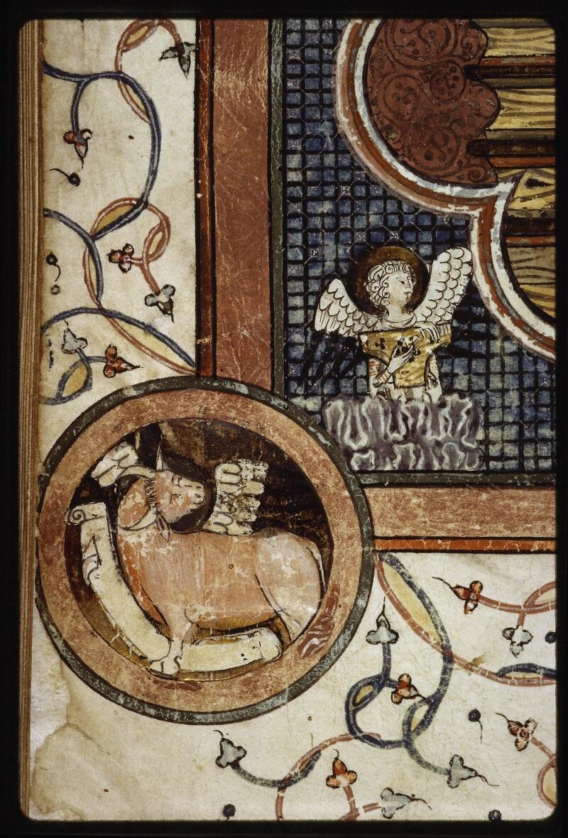 Lyon, Bibl. mun., ms. 0526, f. 110v - vue 5
