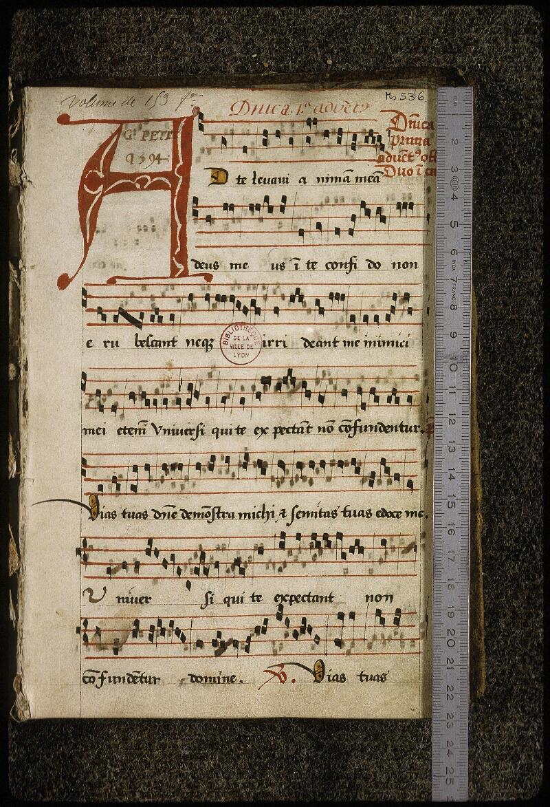 Lyon, Bibl. mun., ms. 0536, f. 001 - vue 1