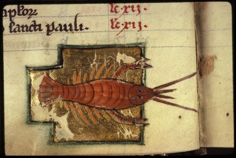 Lyon, Bibl. mun., ms. 0539, f. 004v - vue 3