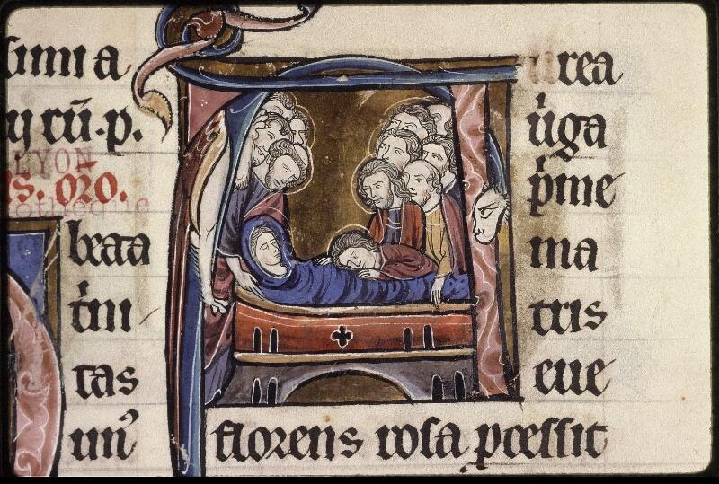 Lyon, Bibl. mun., ms. 0539, f. 243v - vue 3
