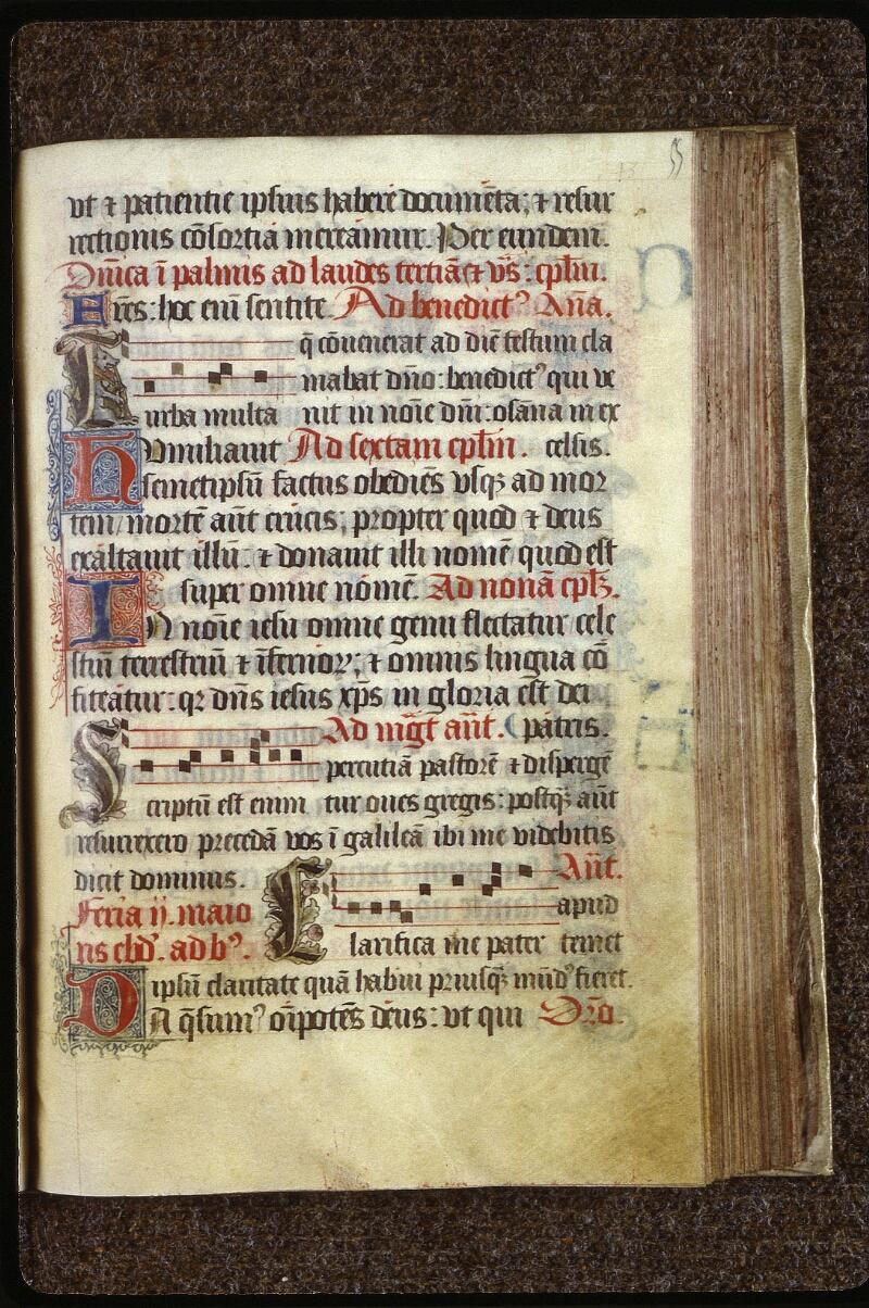 Lyon, Bibl. mun., ms. 0541, f. 055 - vue 1
