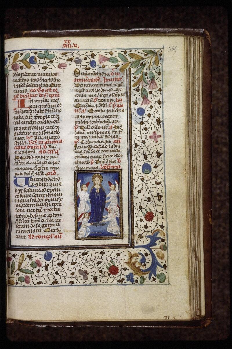 Lyon, Bibl. mun., ms. 0559, f. 365 - vue 1