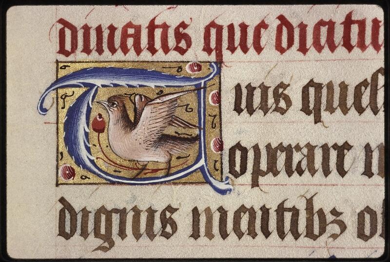 Lyon, Bibl. mun., ms. 0565, f. 040