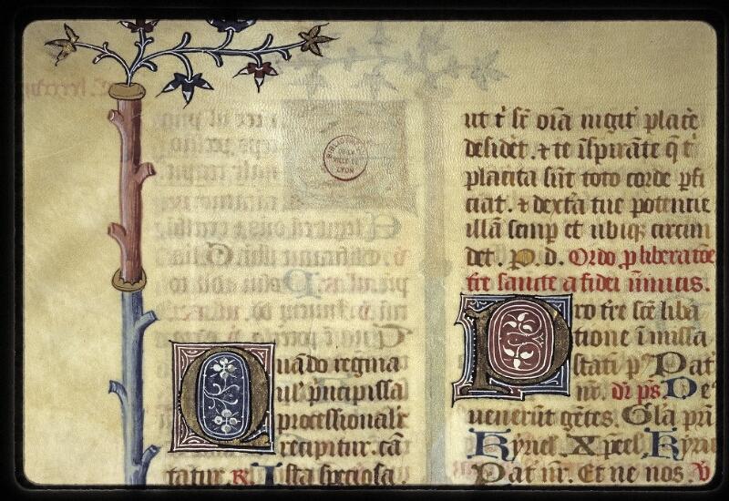 Lyon, Bibl. mun., ms. 0568, f. 194v