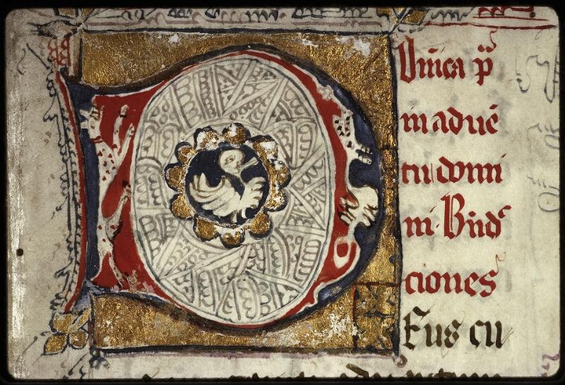 Lyon, Bibl. mun., ms. 0569, f. 001 - vue 3