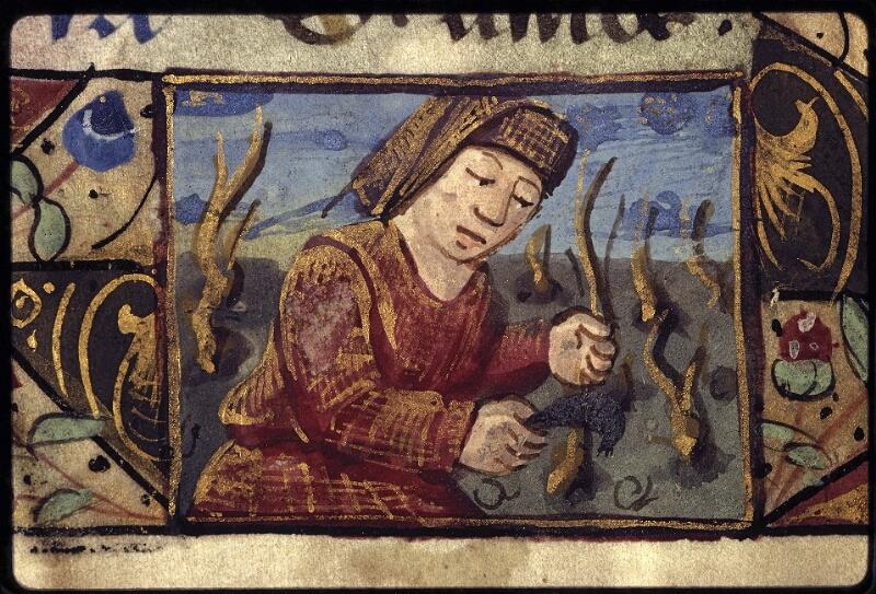 Lyon, Bibl. mun., ms. 0572, f. 005 - vue 4