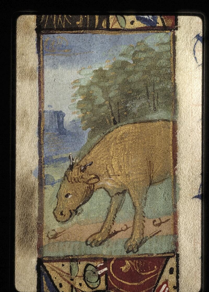 Lyon, Bibl. mun., ms. 0572, f. 005v - vue 2