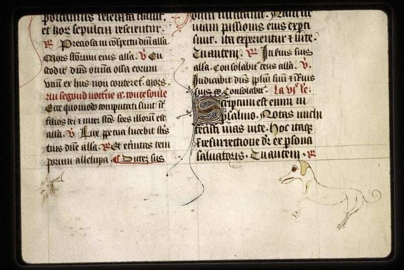 Lyon, Bibl. mun., ms. 0574, f. 230