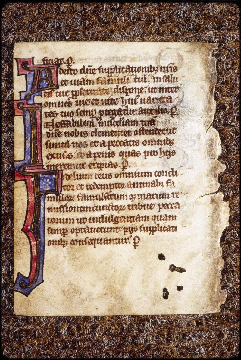 Lyon, Bibl. mun., ms. 0581, f. 242v