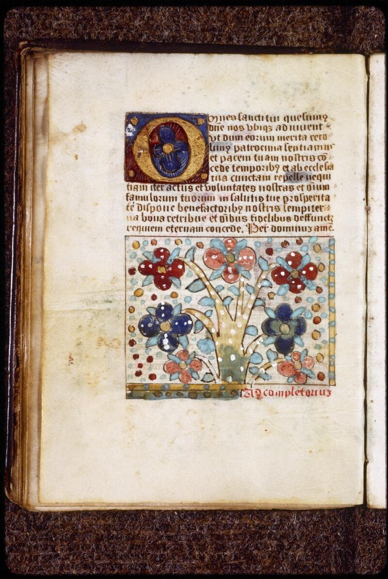Lyon, Bibl. mun., ms. 0582, f. 043v
