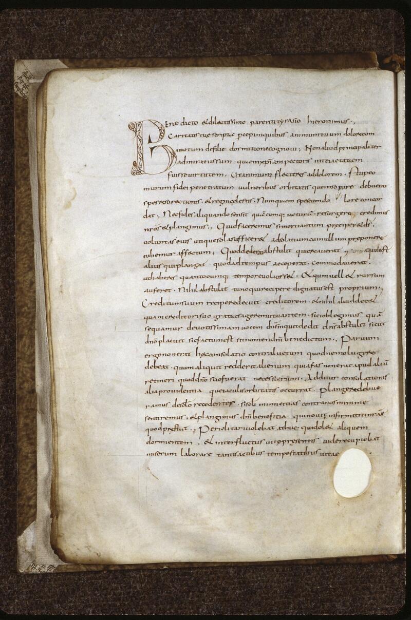 Lyon, Bibl. mun., ms. 0601, f. 012v - vue 2