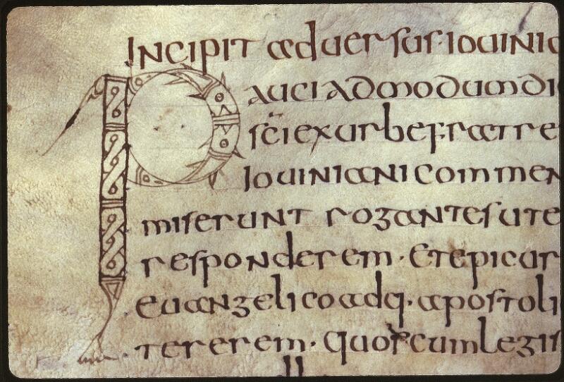 Lyon, Bibl. mun., ms. 0602, f. 095v - vue 2