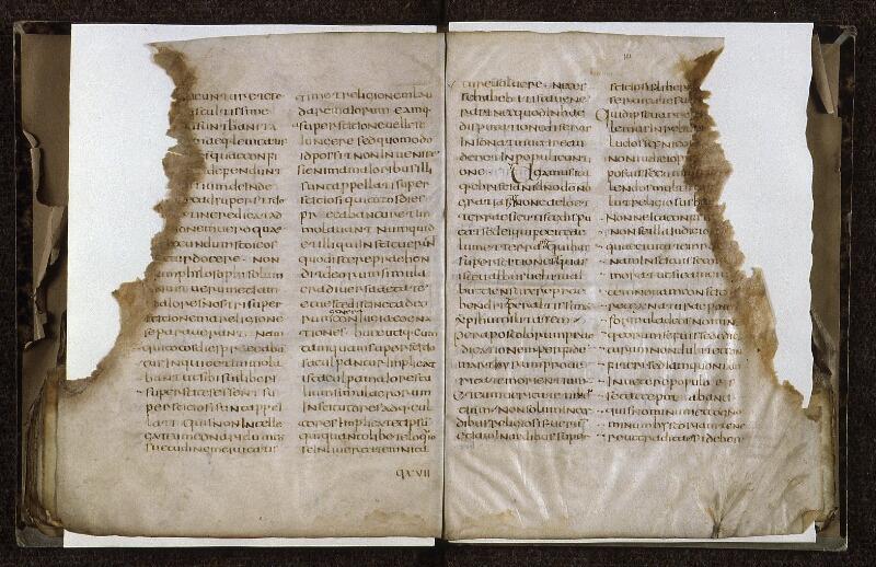 Lyon, Bibl. mun., ms. 0607, f. 100v-101