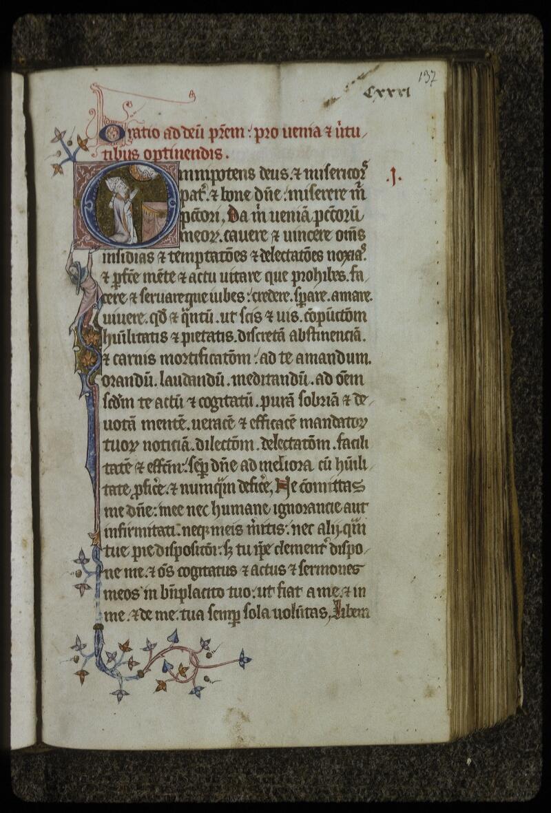 Lyon, Bibl. mun., ms. 0622, f. 137 - vue 1