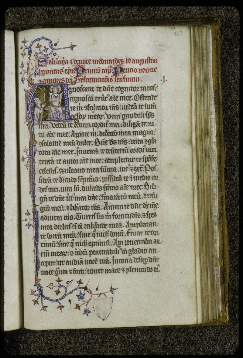 Lyon, Bibl. mun., ms. 0622, f. 267 - vue 1