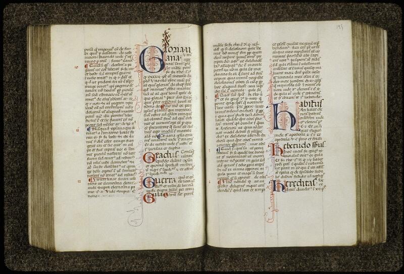Lyon, Bibl. mun., ms. 0700, f. 124v-125