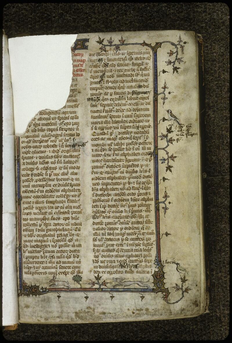 Lyon, Bibl. mun., ms. 0711, f. 001 - vue 2