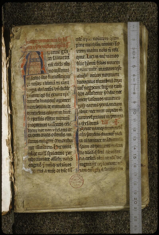 Lyon, Bibl. mun., ms. 0713, f. 001 - vue 1