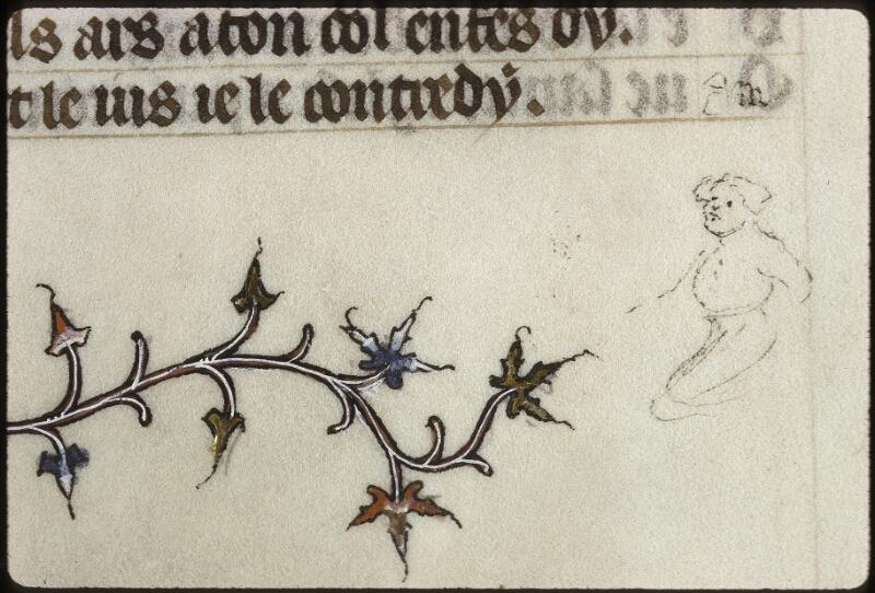 Lyon, Bibl. mun., ms. 0742, f. 016v - vue 4