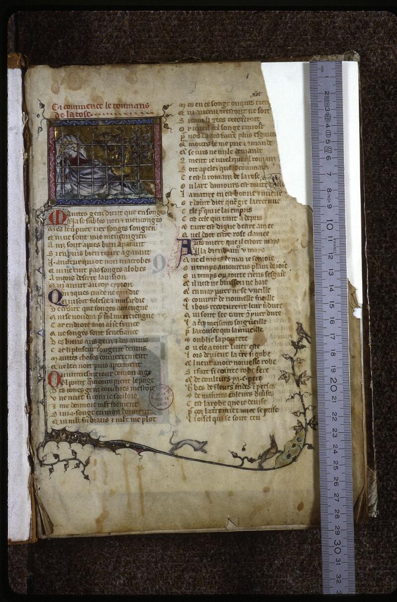Lyon, Bibl. mun., ms. 0763, f. 001 - vue 1