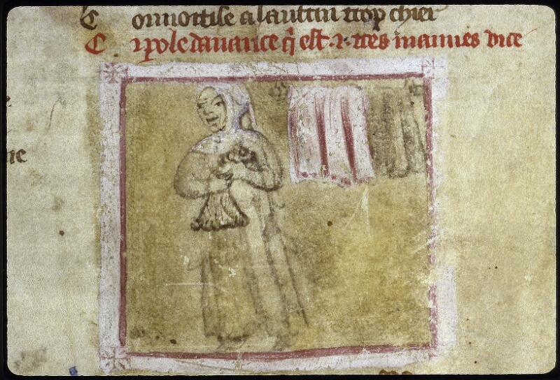 Lyon, Bibl. mun., ms. 0764, f. 002 - vue 3