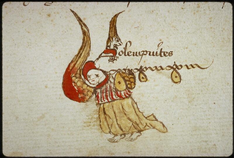 Lyon, Bibl. mun., ms. 0769, f. 072v - vue 2
