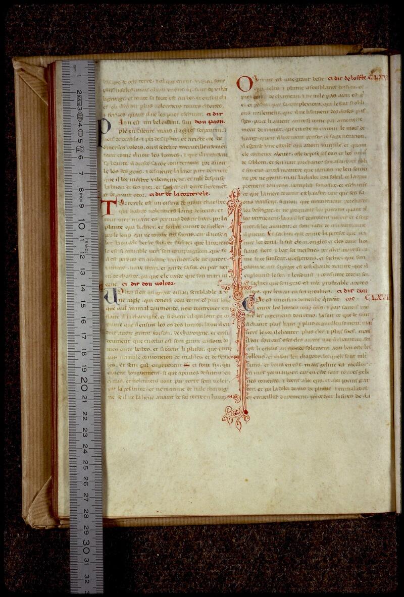 Lyon, Bibl. mun., ms. 0781, f. 037v - vue 1